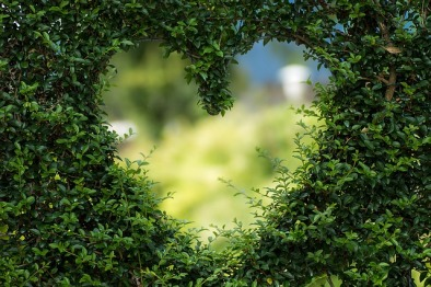 heart-1192662_640 (1)